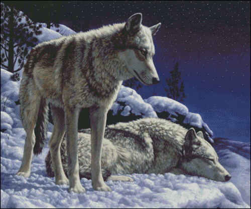 cross stitch pattern of wolves in snow by wildlife artist Crista Forest, ForestWildlifeArt.com. Fine Art Prints available