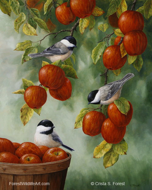 Oil painting of black-capped chickadees in an apple tree, by wildlife artist Crista Forest. ForestWildlifeArt.com Prints Available.