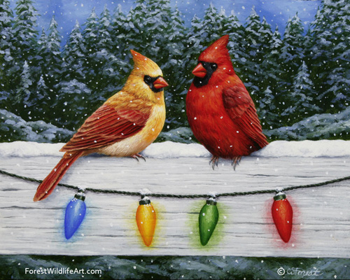 Oil painting of Northern Red Cardinals and Christmas lights, by wildlife artist Crista Forest, ForestWildlifeArt.com. Fine Art Prints available