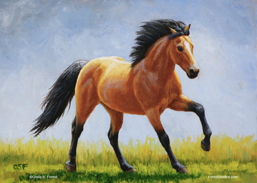 Oil painting of a running buckskin horse by equine artist Crista Forest, ForestStudios.com. Fine Art Prints available