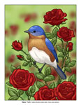 NY state bird and flower illustration