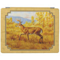 whitetail buck art gifts