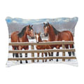 quarter horse home decor