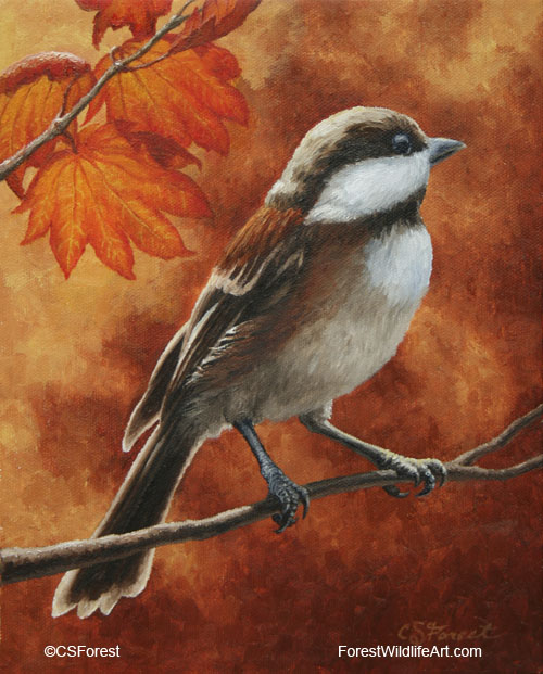 Chestnut-backed chickadee and autumn leaves
