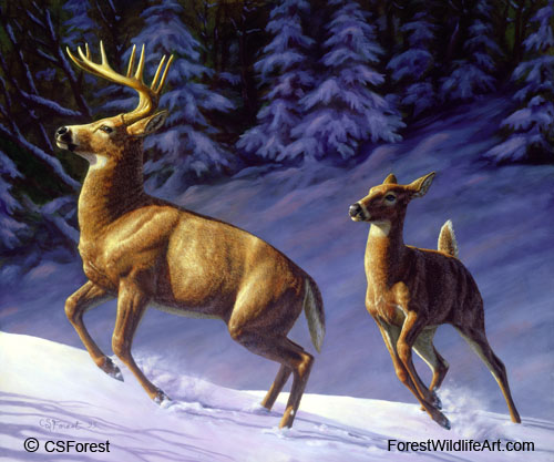 whitetail deer in winter oil painting