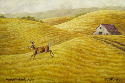 whitetail deer and old barn