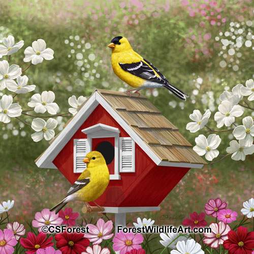 Goldfinches and cute red birdhouse