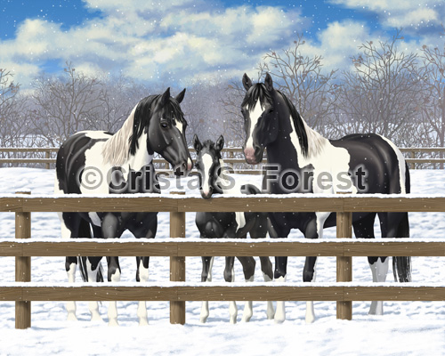 Black Pinto Horses In Snow Painting