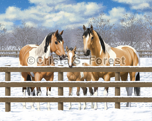 Buckskin Pinto Horses In Snow Painting