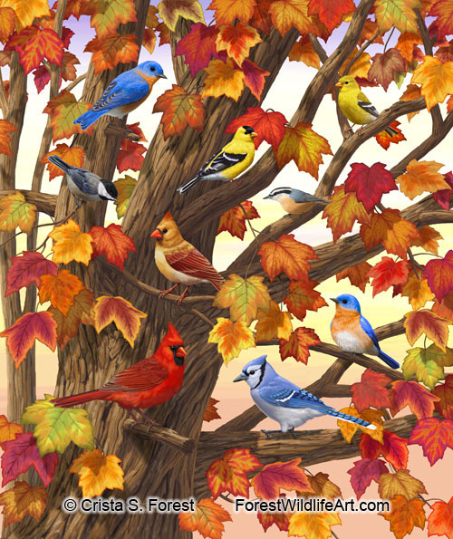 Autumn Birds Maple Tree