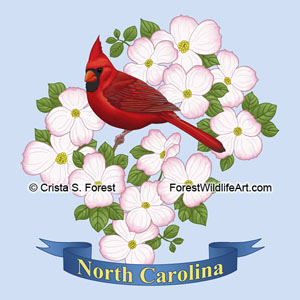 CA state bird and flower illustration