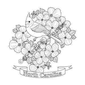 NC state bird and flower coloring page