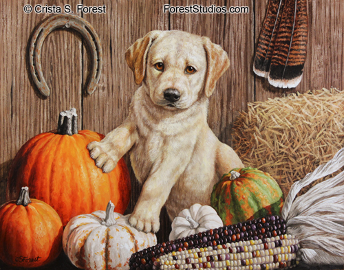 Oil painting a Labrador Retriever puppy and pumpkins by artist Crista Forest, ForestWildlifeArt.com. Fine Art Prints available